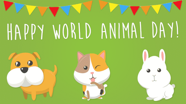 World Animal's Day